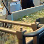ITEAF en centrales hortofrutícolas